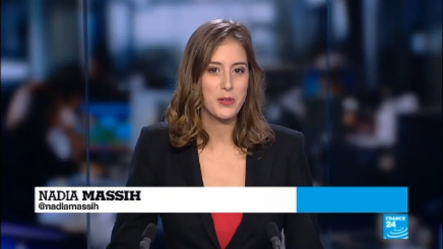 [France 24] Donald Trump''s first year: Fight against climate change continues despite his positions