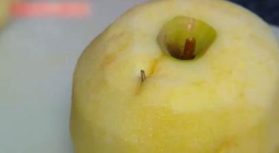 호주 '바늘 과일' 공포…딸기에 이어 사과 바나나까지