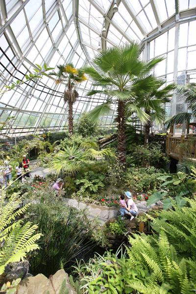 곤충박물관은 이어진 실내 온실의 모습.