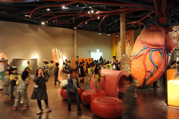 '한강과 물' 전시실 바로 옆에는 신체 기관의 모형을 전시해 놓은 공간이 있다.