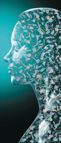 사람의 몸은 수많은 미생물이 세포와 공생하고 있는 생태계다. 이를 표현하기 위해 사람의 얼굴과 각종 미생물의 확대 사진을 합성한 그림. /네이처 제공
