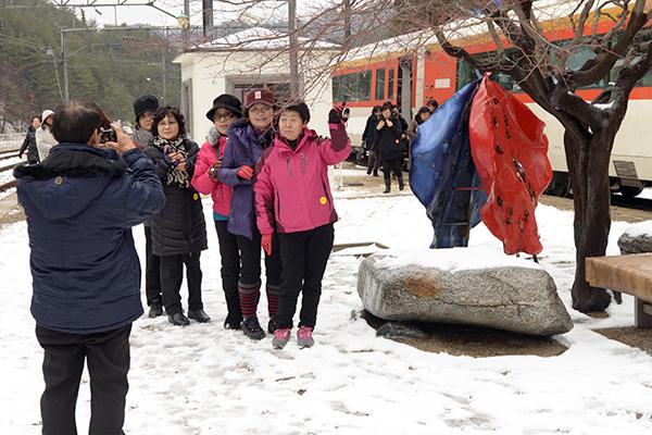 관광객들이 단풍나무 앞에서 사진을 찍고 있다.
