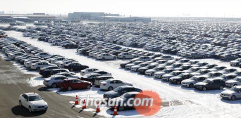 지난 4일 경기도 평택국제자동차부두에 수입된 독일산 BMW 자동차 3000여대가 쌓여 있다. 연초부터 수입차 물량이 급증해 국산차와 치열한 판매 경쟁을 펼칠 것으로 전망된다. /김은정 기자