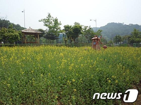 여월꽃단지 전경.© News1