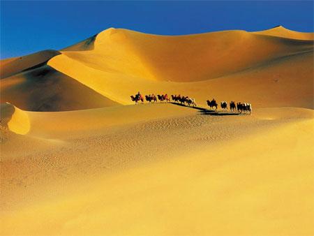 낙타를 타고 광활한 사막을 건너는 경험은 국내는 물론 동남아시아에서는 절대 맛볼 수 없다. 바다가 아닌 곳에서 보내는 특별한 여름 바캉스다