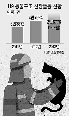 119 동물구조 현장출동 현황 그래프