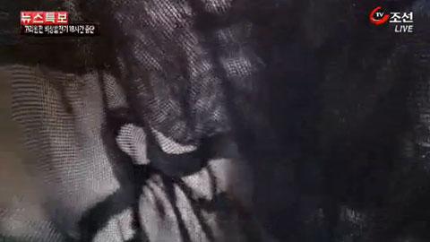 video_0