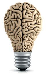 뷔페만 가면 과식하는 이유, 腦는 알고 있다