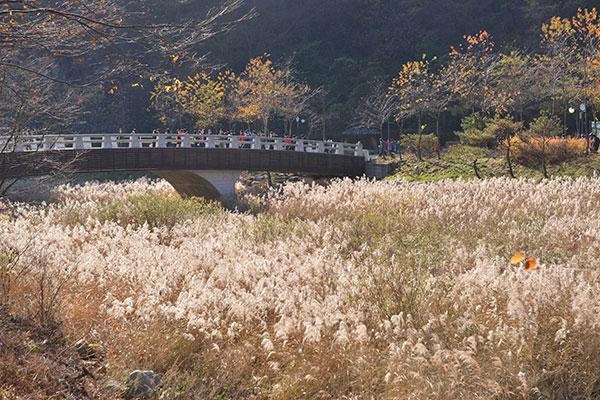 지난 2010년 조성한 문경자연생태공원의 모습.