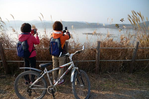 자전거 2코스에서는 우포늪의 전경과 철새를 감상할 수 있다.