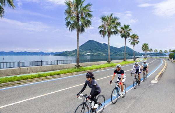 히로시마의 이쿠치섬(生口島) 사이클링 도로에는 따뜻한 기후 때문에 팜트리가 심어져 있다. 시마나미해도의 사이클링 도로에는 파란색 선이 칠해져 있다