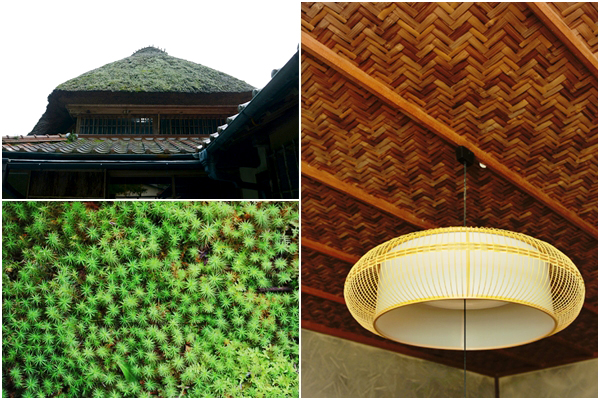 정원의 바닥은 이끼가 가득해 마치 융단을 깔아 놓은 것 같다. 건물 내부 천장은 띠를 엮어서 지붕을 만드는 '가야부키(茅葺)'방식으로 지어졌다.
