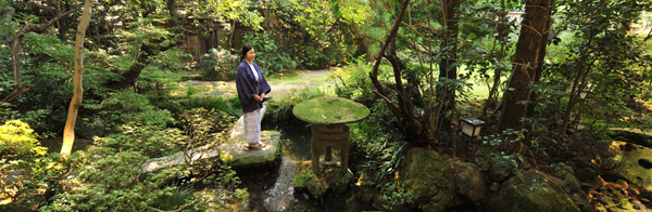 삼나무 숲에 둘러싸인 조용한 정원이 인상적인 '다이쇼야(大正屋)여관'.