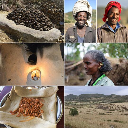 (왼쪽 위부터 지그재그로) 1. 장작을 파는 시장. 낙타에 실려 있는 장작을 사려고 흥정하는 사람들과 낙타. 2. 당나귀에 짐을 지우고 길을 가는 부인들. 3. 아프리카 특유의 굽등이 있는 황소를 몰고 가는 농부들. 배경은 '떼프'가 노랗게 익은 가을 밭. 4. 세계적으로 멸실되고 있는 원시적 방법으로 토기를 만들고 있는 토기장이 아낙네. 5. 아내가 만든 토기를 시장으로 지고 가는 남편. 6. 토기장이의 가족. 식구들이 맨발로 산다.