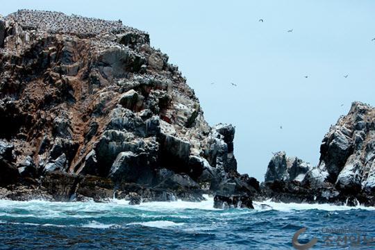 자연과 인간이 어우러지는 곳, 작은 갈라파고스