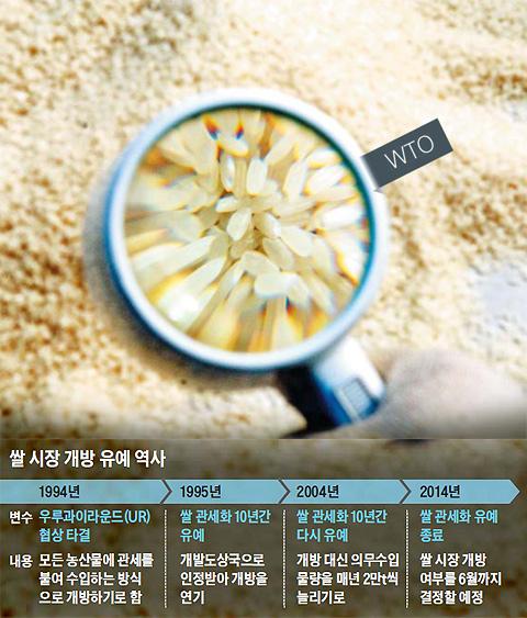 쌀 시장 개방 유예 역사표