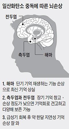 일산화탄소 중독에 따른 뇌손상 개념도