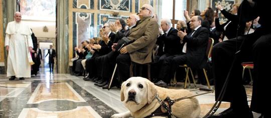 프란치스코 교황이 13일 바티칸에서 이탈리아 시각장애인연합회 회원들을 만나기 위해 회의장으로 들어서고 있다. 시각장애인이 데려온 맹인 안내견도 보인다.