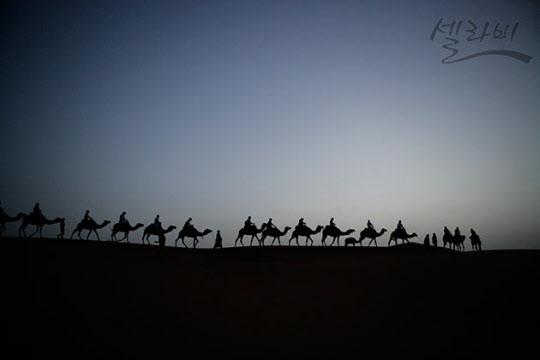 새벽에 낙타를 타고 저 높은 곳을 향하여