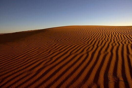 토네이도가 지나간 후 생겨난 사막의 물결