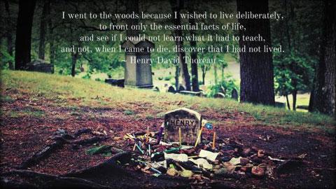 '나는 숲에 간다. 삶의 가장 본질적인 것들만을 대면해 보고 싶기 때문이다.'