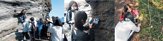 다양한 생태탐사를 벌이고 있는 제주여고 학생들.