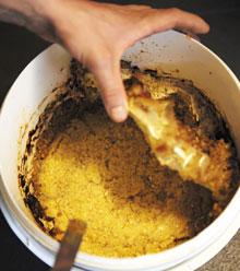 일본 미소(된장)에서 영감을 받아 덴마크 완두콩을 이용해 담근'피소'된장.