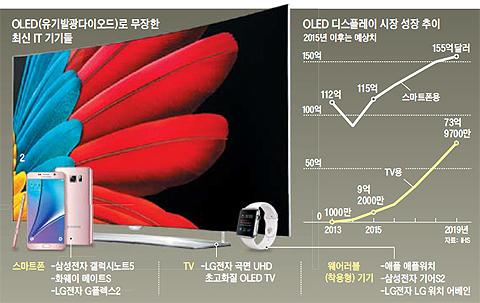 OLED 디스플레이 시장 성장 추이 그래프