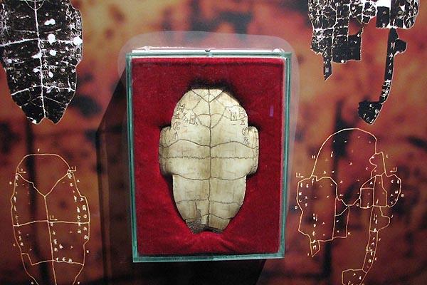 거북이 등껍질에 새겨진 갑골문.