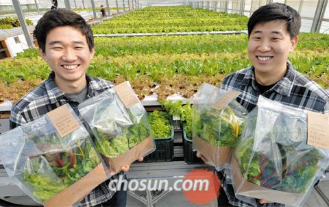 농업 벤처기업 '만나CEA'의 전태병(왼쪽), 박아론 공동대표가 '자동화 유리온실'에서 수확한 채소를 들어보이고 있다.