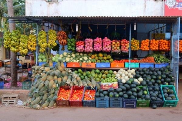 인도 휴양지의 대세, 바르깔라!