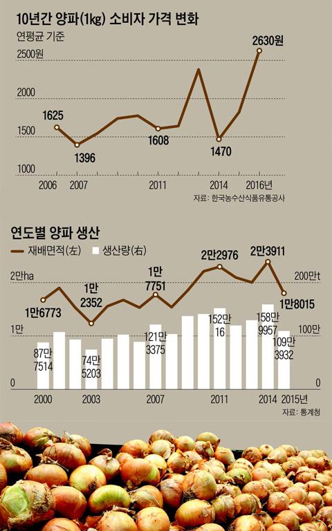 10년간 양파 소비자 가격 변화