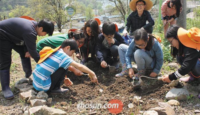 지난 22일 전북 완주군 신월리 동상초등학교 5~6학년 학생들이 학교 뒤뜰에서 텃밭을 가꾸고 있다. 이 학교 전교생 27명 중 8명이 도시에서 온 유학생들이다.