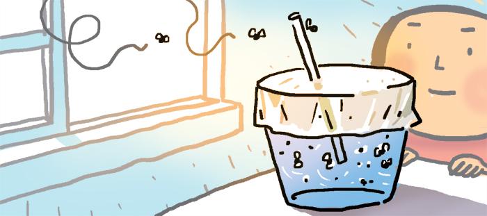 [리빙포인트] 주방에 몰리는 초파리 없애려면
