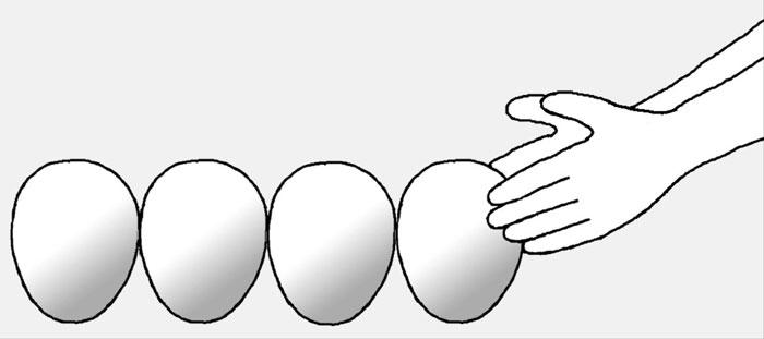 [리빙포인트] 달걀 신선하게 보관하려면