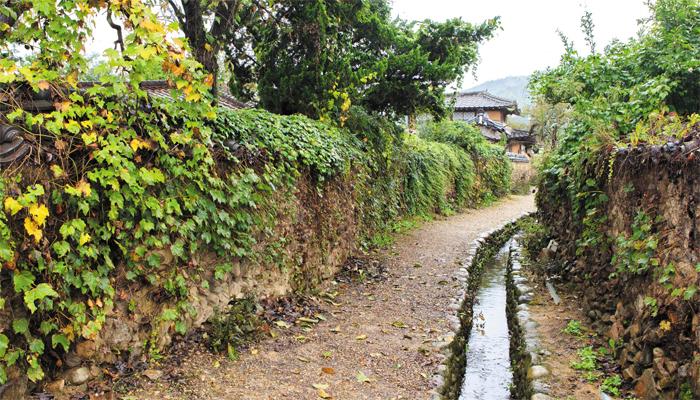임진왜란 때 의병장 고경명 후손들이 사는 삼지내마을 토담.