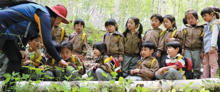 강원도 인제군 자작나무숲에서 아이들이 숲해설사의 설명을 차분하게 들으면서 '유아숲 체험'을 하고 있다