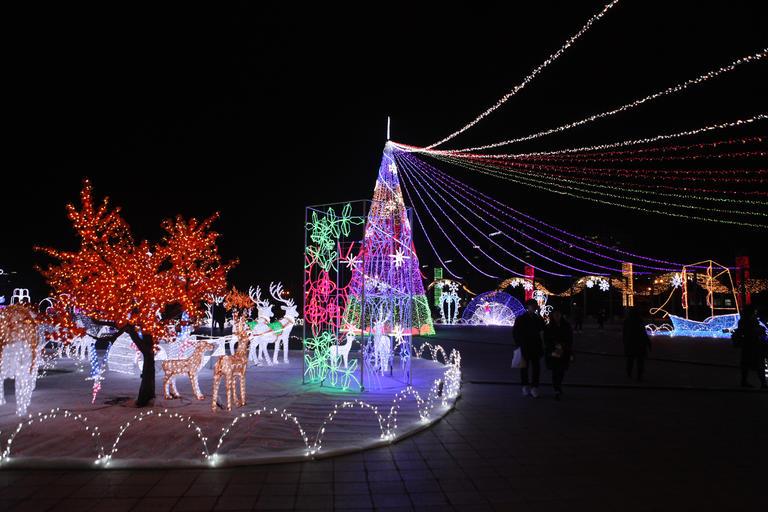 고양호수꽃빛축제…빛의 향연