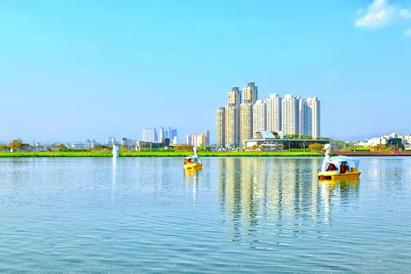 호수와 건물, 오리배가 어우러진 수성못의 모습.