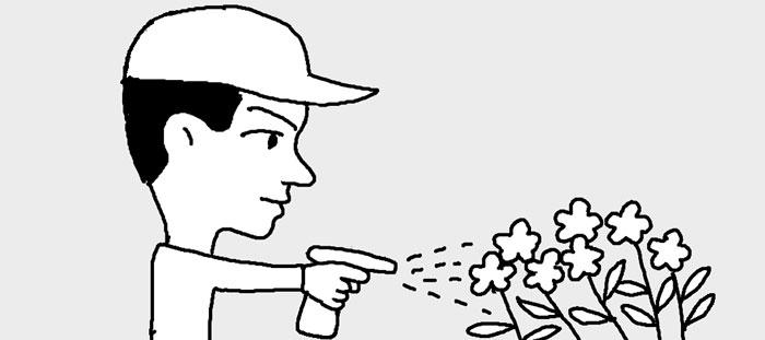[리빙포인트] 화초 진딧물 예방은 마요네즈로