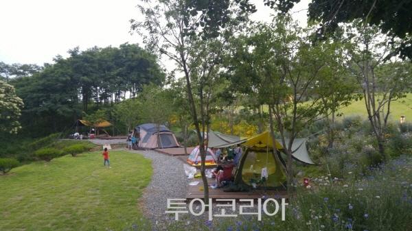 봄 캠핑, 도심 속 바다 품은 시흥으로~