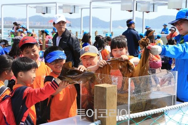 해조류 체험장에서 다시마를 만져보며 체험중인 아이들
