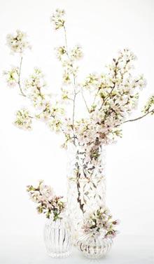 꽃장식 사진