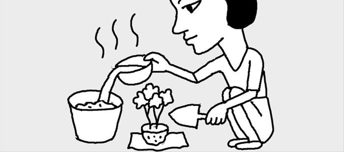 [리빙포인트] 분갈이 화분 재활용할 땐