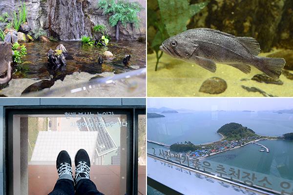 진해해양공원 내의 어류생태학습관(위)와 창원 솔라타워 내부 모습 이모저모(아래)