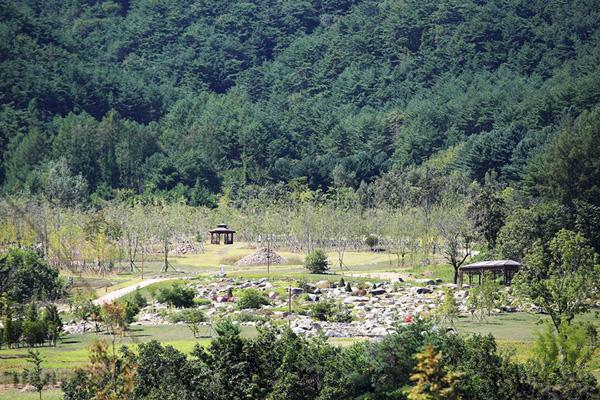 백두대간 수목원에서는 계절별로 다양한 프로그램을 즐길 수 있다.