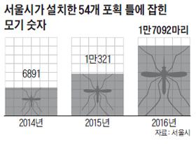 서울시가 설치한 54개 포획 틀에 잡힌 모기 숫자 그래프