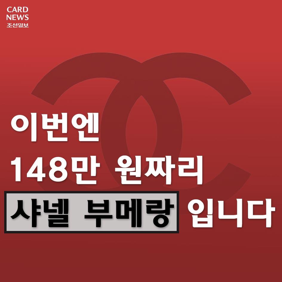 [카드뉴스] 이번엔 148만 원짜리 샤넬 부메랑입니다
