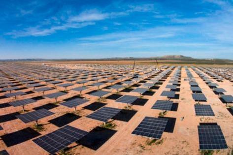미국 텍사스주에 있는 알라모6 태양광발전소의 모습 / OCI 제공