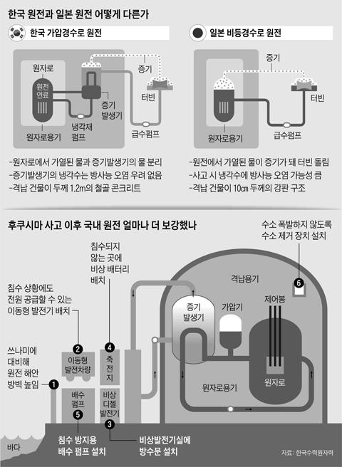 한국 원전과 일본 원전의 차이 그래픽